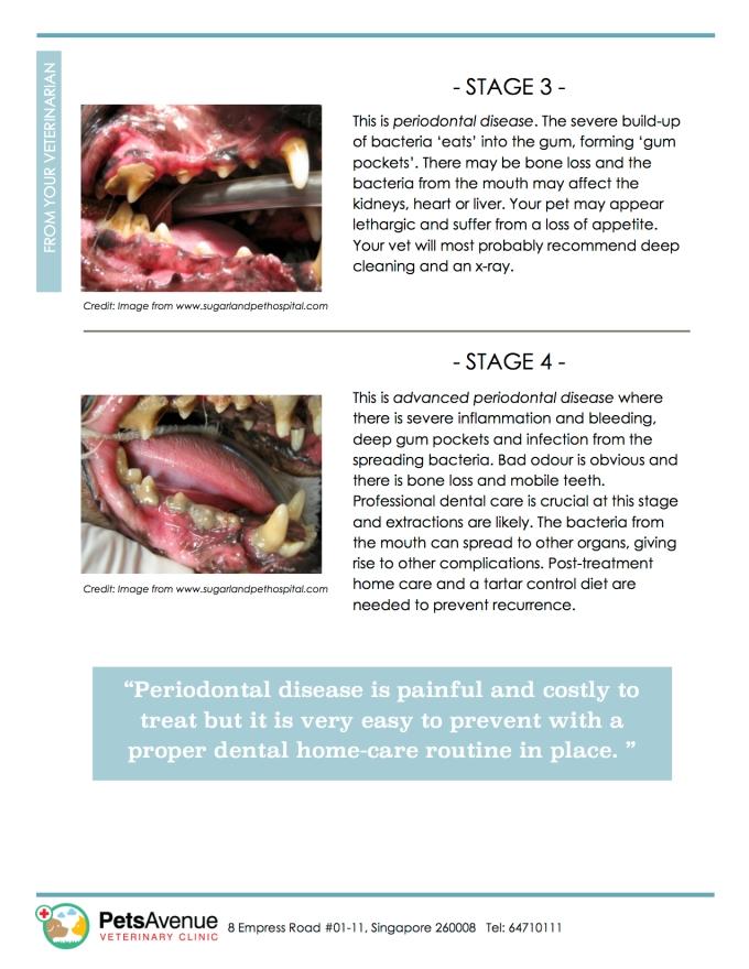 PAVC Dental health series - Periodontal Disease 2