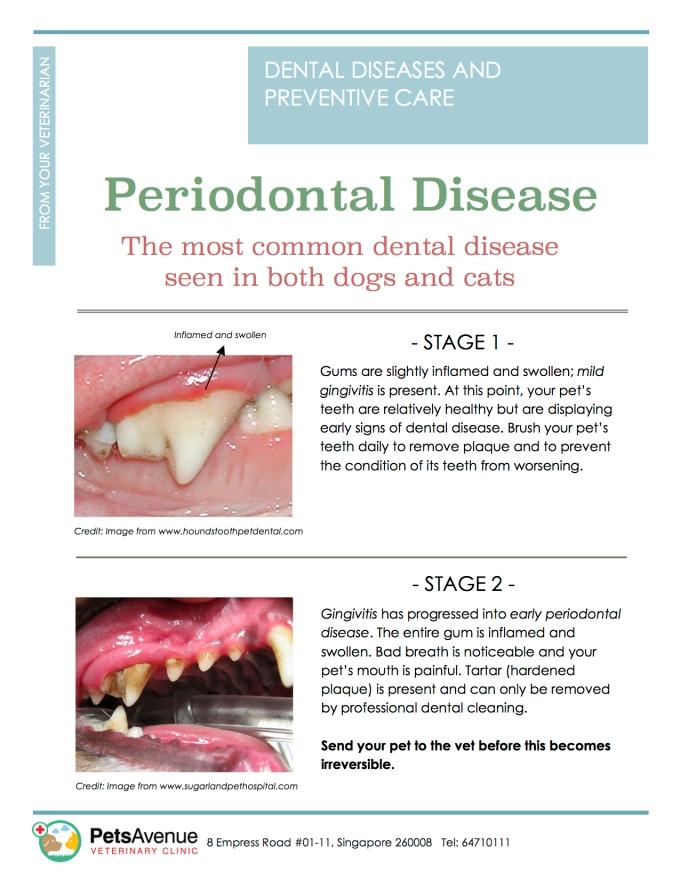 PAVC Dental health series - Periodontal Disease