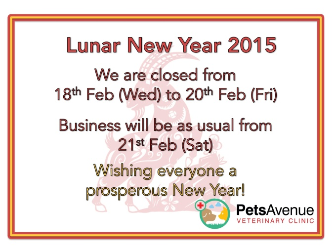 CNY opening hours
