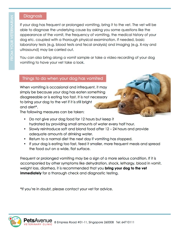 PAVC Common emergencies series - Vomiting in Dogs2