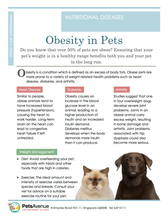 PAVC Nutritional Diseases series - Obesity in Pets