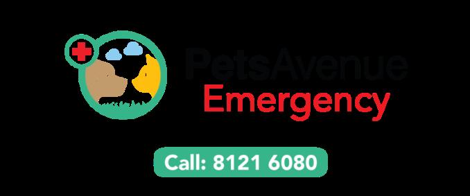 pavc-emergency-website-logowithtel3resize2-e1426774925338