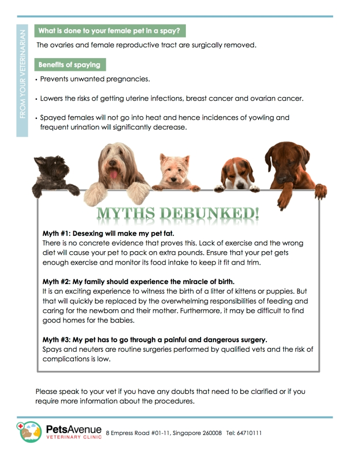 PAVC Pet Healthcare series - Spaying and Neutering Your Pet2
