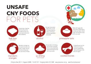 Pet Tips for the CNY Festivities